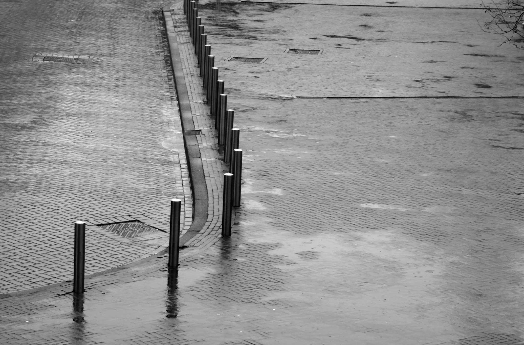 Regen - Narrenwijsheid